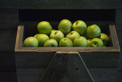 Apples. Healthy green apples in a market in Holland Royalty Free Stock Photography