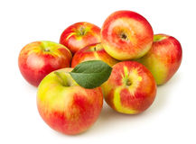 Apples heap Stock Image