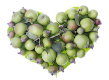 Apples heart Stock Photo
