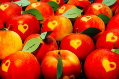 Apples with heart shape. And paper leaves with the inscription von Herzen... from Heart... Written in German is it Royalty Free Stock Photos