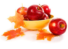Apples In A Yellow Bowl Royalty Free Stock Images
