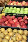 Apples inside a basket Royalty Free Stock Photo