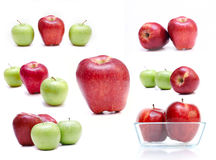 Apples isolated. A collection of fresh apples Royalty Free Stock Photo