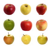 Apples isolated on white background, with clipping path Stock Images