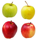 Apples isolated on white background Royalty Free Stock Photos