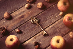 Apples, key, fir-cones and nuts Stock Photos