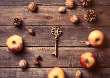 Apples, key, fir-cones and nuts Stock Images