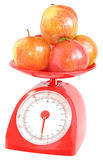 Apples on kitchen scales. Stock Photography