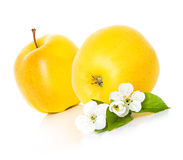 Apples with leaf and flowers Royalty Free Stock Photos