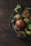 Apples with leaves Stock Image