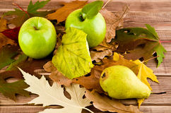 Apples and leaves Stock Photography