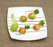 Apples lettuce and onion music Royalty Free Stock Photos