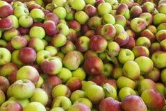 apples lobo container Stock Photos