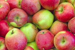 Apples at the market Royalty Free Stock Photography