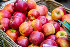 The apples at the market display stall. Apples at the market display stall royalty free stock photo