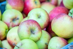 The apples at the market display stall. Apples at the market display stall royalty free stock images