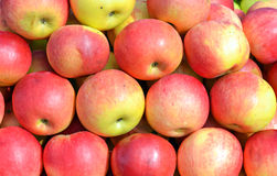 Apples on the market Royalty Free Stock Photo