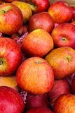 Apples in a market stall. Stock Image