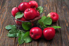 Apples in metal basket Royalty Free Stock Photography