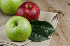 Apples in a napkin Stock Image