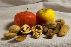 Apples and nuts. Arranged on burlap royalty free stock images