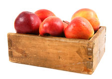 Apples in an old box Stock Photos