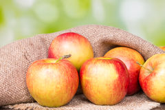 Apples on an old wooden Stock Image