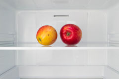 Apples in open empty refrigerator  Weight loss diet concept Stock Image