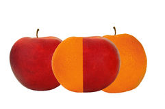 Apples and Oranges. Concept of comparing apples and oranges Royalty Free Stock Images