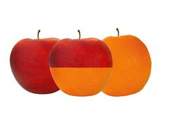 Apples and Oranges. Concept of comparing apples and oranges Royalty Free Stock Photography