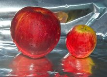 Apples from the orchard. Royalty Free Stock Photos