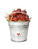 Apples In A Pail Royalty Free Stock Image