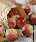 Apples In A Paper Bag Royalty Free Stock Image