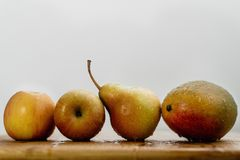 Fruits in a row stock photography