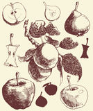 Apples and pears. Royalty Free Stock Image