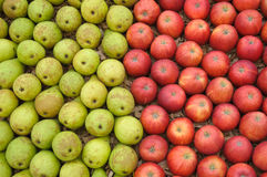 Apples and pears. Half pears and half apples on a supermarket Stock Image