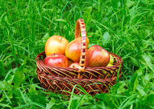 Apples and pears in basket Royalty Free Stock Photos