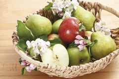 Apples, Pears and blossoms in basket Royalty Free Stock Photography
