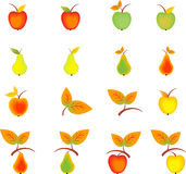 Apples Pears and Fall Leaves. Multicolored Apples and Pears, fruit s, multicolored leaves, fall decoration, autumn decoration,red apples, green apples, yellow Stock Images