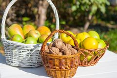 Apples, pears and nuts in basket Royalty Free Stock Image