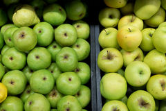 Green aplles and pears in 2 black trays. Apples and pears background Stock Photography