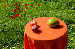 Apples and peer. Ecological food. Royalty Free Stock Photo
