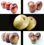 Apples photo compilation Royalty Free Stock Photography