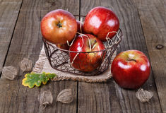 Apples and physalis husk Royalty Free Stock Images