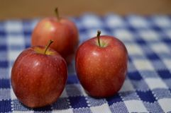 Apples and Picnic Blanket Royalty Free Stock Photography