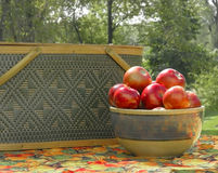 Apples and picnics. A bowl of beautiful red apples sit  on a picnic table Royalty Free Stock Photo