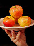 Apples on a plate. Royalty Free Stock Image