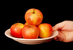 Apples on a plate. Stock Photography
