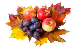 Apples, plums and autumn leaves isolated Royalty Free Stock Photography