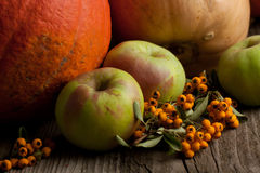 Apples and pumpkins Royalty Free Stock Image
